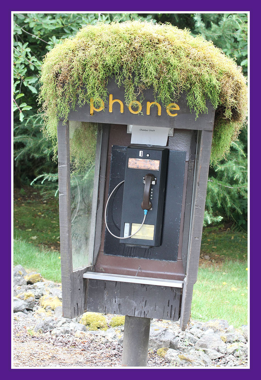 An An old pay phone which was located at the Hoh Ranger Station.